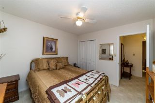 Photo 18: 13 Atkinson Place: St. Albert House for sale : MLS®# E4243702