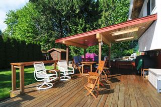 Photo 16: 22116 CANUCK Crescent in Maple Ridge: West Central House for sale : MLS®# R2061368