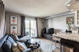 Photo 10: 301 104 24 Avenue SW in Calgary: Mission Apartment for sale : MLS®# A1107682