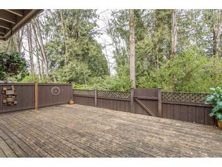 Photo 36: 3 4860 207 STREET in Langley: Langley City Townhouse for sale : MLS®# R2558890