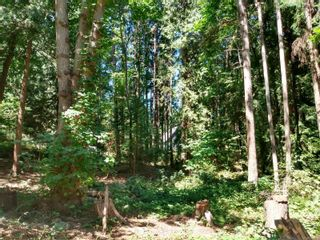 Photo 2: 99 Pirates Lane in : Isl Protection Island Land for sale (Islands)  : MLS®# 882311