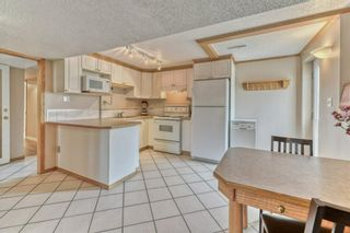 Photo 23: 703 Alderwood Place SE in Calgary: Acadia Detached for sale : MLS®# A1131581