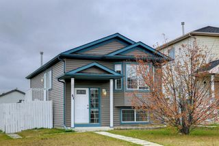 Main Photo: 61 Martinvalley Way NE in Calgary: Martindale Detached for sale : MLS®# A1154418