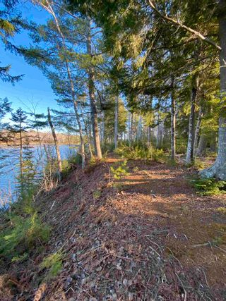 Photo 14: Saunders Road in Durham: 108-Rural Pictou County Vacant Land for sale (Northern Region)  : MLS®# 202108674