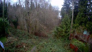 "Photo 25: 11270 96 Avenue in Delta: Annieville Land for sale in ""ANNIEVILLE"" (N. Delta)  : MLS®# R2526728"