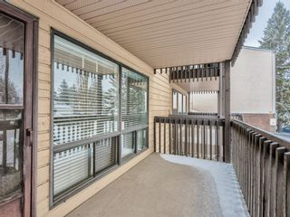 Photo 11: 50 3519 49 Street NW in Calgary: Varsity Apartment for sale : MLS®# A1065199