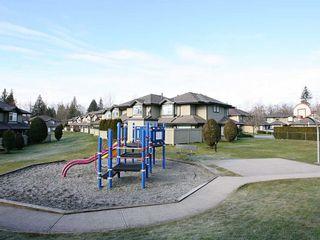 Photo 19: 77-11737 236 Street in Maple Ridge: Cottonwood MR Condo for sale : MLS®# R2519668