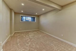 Photo 16: 19 Falshire Close NE in Calgary: Falconridge Detached for sale : MLS®# A1121159