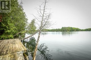 Photo 16: 0 MARKS POINT Road in Bancroft: Vacant Land for sale : MLS®# 40141117