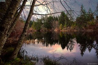 Photo 26: 3220 Eagles Lake Rd in VICTORIA: Hi Eastern Highlands House for sale (Highlands)  : MLS®# 812574