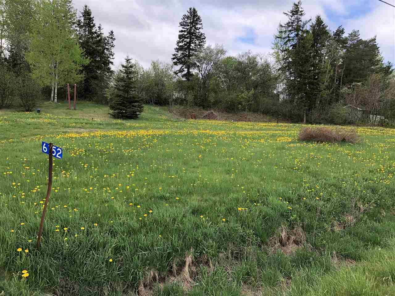 Main Photo: 6152 Highway 4 in Linacy: 108-Rural Pictou County Vacant Land for sale (Northern Region)  : MLS®# 202101547