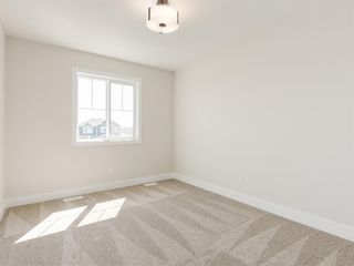 Photo 39: 159 CANOE Crescent SW: Airdrie Detached for sale : MLS®# A1019943