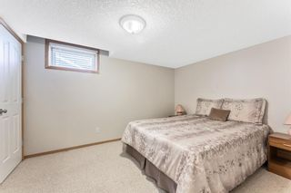 Photo 45:  in Calgary: Hamptons Detached for sale : MLS®# A1121640
