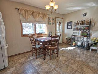Photo 13: 19 Elder Street: Red Deer Detached for sale : MLS®# A1083551