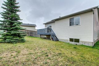 Photo 42: 379 Coventry Road NE in Calgary: Coventry Hills Detached for sale : MLS®# A1139977
