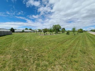 Photo 30: 21 THOMAS Drive: Strathmore Detached for sale : MLS®# A1116850