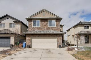 Photo 41: 70 Royal Ridge Mount NW in Calgary: Royal Oak Detached for sale : MLS®# A1101714