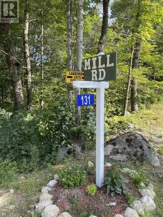Photo 9: Lot 4 New Elm Road in New Elm: Vacant Land for sale : MLS®# 202119710