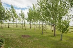 Photo 31: 1113 Twp Rd 300: Rural Mountain View County Detached for sale : MLS®# A1026706