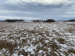 Photo 5: Kautz Land in Browning: Farm for sale (Browning Rm No. 34)  : MLS®# SK849571