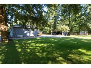 """Photo 17: 17725 20 Avenue in Surrey: Hazelmere House for sale in """"NCP 4"""" (South Surrey White Rock)  : MLS®# R2184388"""