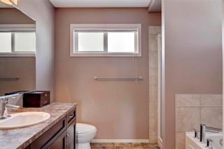 Photo 17: 123 COPPERSTONE Gardens SE in Calgary: Copperfield House for sale : MLS®# C4168083