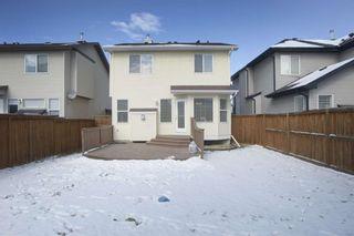 Photo 38: 33 Brightondale Park SE in Calgary: New Brighton Detached for sale : MLS®# A1088765