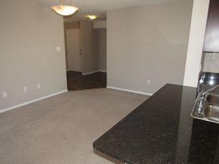 Photo 11: 402 11812 22 Avenue in Edmonton: Zone 55 Condo for sale : MLS®# E4266126
