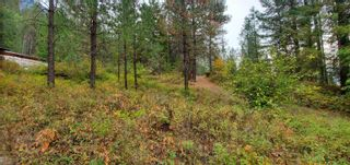 Photo 18: 789 Shuswap River Drive, in Lumby: House for sale : MLS®# 10240114