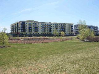 Photo 30: 219 1316 WINDERMERE Way in Edmonton: Zone 56 Condo for sale : MLS®# E4223412