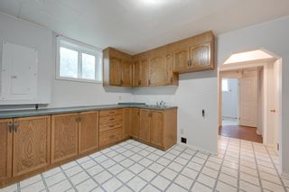 Photo 22: 12123 61 Street NW in Edmonton: House for sale : MLS®# E4166111