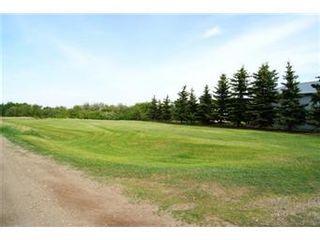 Photo 18: Scrivener Acreage: Hague Acreage for sale (Saskatoon NW)  : MLS®# 393157