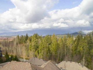 Photo 40: 22805 137th Avenue Maple Ridge For Sale