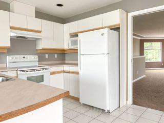 Photo 6: 20126 WHARF Street in Maple Ridge: Southwest Maple Ridge House for sale : MLS®# R2599414