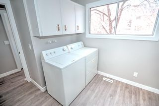 Photo 23: 547 Templeby Place NE in Calgary: Temple Detached for sale : MLS®# A1071164