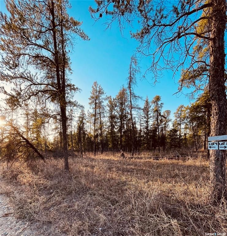 Main Photo: Over one acre lots in Hudson Bay: Lot/Land for sale : MLS®# SK850480