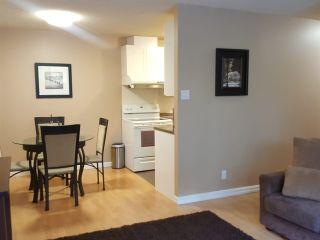 "Photo 13: 202 7275 SALISBURY Avenue in Burnaby: Highgate Condo for sale in ""KINGSBURY"" (Burnaby South)  : MLS®# R2394733"