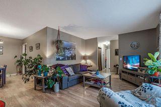 Photo 5: 255 Maitland Crescent NE in Calgary: Marlborough Park Detached for sale : MLS®# A1061446