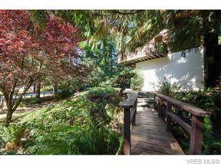 Photo 14: 2523 Brule Dr in SOOKE: Sk Sooke River House for sale (Sooke)  : MLS®# 744629