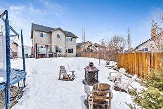 Photo 44: 6 Crystal Green Grove: Okotoks Detached for sale : MLS®# A1076312