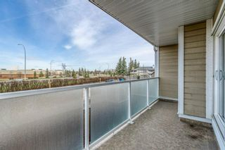 Photo 17: 203 3737 42 Street NW in Calgary: Varsity Apartment for sale : MLS®# A1105296
