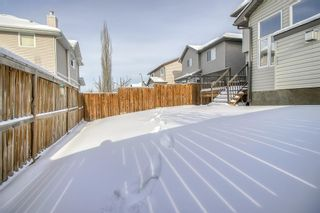 Photo 46: 150 Cranwell Green SE in Calgary: Cranston Detached for sale : MLS®# A1066623