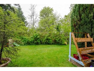 """Photo 34: 46 8863 216 Street in Langley: Walnut Grove Townhouse for sale in """"Emerald Estates"""" : MLS®# R2574730"""
