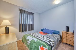 Photo 17: 39 Erin Green Way SE in Calgary: Erin Woods Detached for sale : MLS®# A1118796