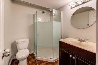 Photo 30: 4608 162A Avenue in Edmonton: Zone 03 House for sale : MLS®# E4255114