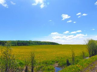 Photo 14: 13934 PACKHAM FRONTAGE Road: Charlie Lake Agri-Business for sale (Fort St. John (Zone 60))  : MLS®# C8039465