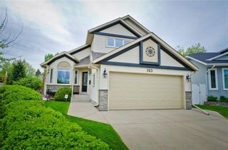 Photo 1: 163 MACEWAN RIDGE Close NW in Calgary: MacEwan Glen Detached for sale : MLS®# C4299982