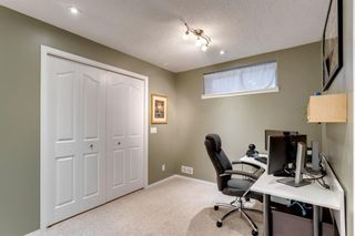 Photo 35: 121 Bridlewood Court SW in Calgary: Bridlewood Detached for sale : MLS®# A1096273