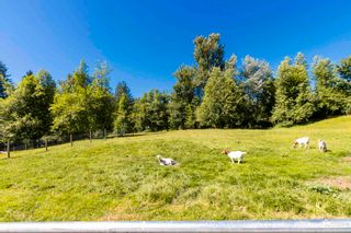 Photo 31: 6111 LECLAIR Street in Abbotsford: Bradner House for sale : MLS®# R2597429