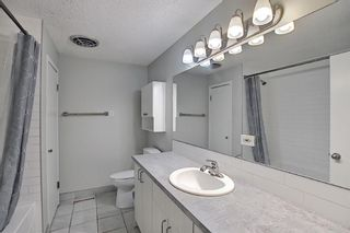Photo 12: 3027 Beil Avenue NW in Calgary: Brentwood Detached for sale : MLS®# A1117156